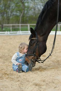 Little baby girl with big horse friend