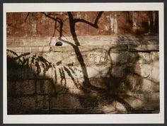 Michel Delaborde, Sans titre, Chine, 1981-1982  Tirage couleur Ministère de la culture (France), Médiathèque de l'architecture et du patrimoine, Diffusion RMN-GP