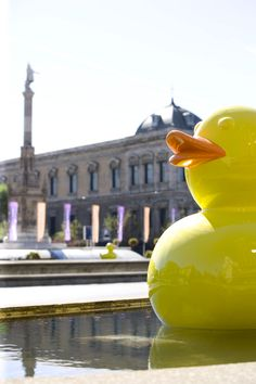 "demo's ""PATOS "" in Madrid. #POPART #ART #Rubberduckie"