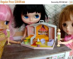 ONSALE Blythe's very own Barbie Doll And Barbie House Case