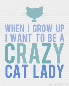 OMG My Wish Did Come True! | Crazy Cat Lady | by jollyrocket @Etsy