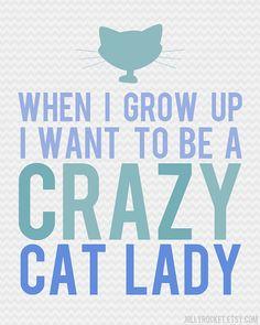 OMG My Wish Did Come True!   Crazy Cat Lady   by jollyrocket @Etsy
