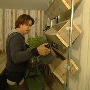 Verticaal tuinieren, leuk tegen de muur