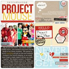 Welcome to....Project Mouse!