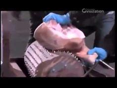 Máquinas Mortais: A Inquisição (Dublado) Documentário Completo Discovery...