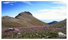 Ascanio Buccella - La cresta delle Murelle_.jpg