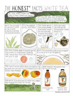 The Honest Facts: White Tea