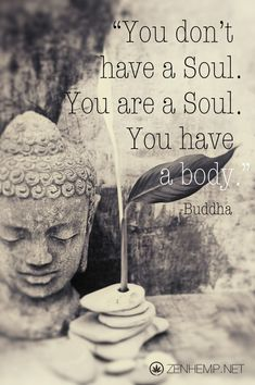 License Elena Ray Art Photography at www.elenaray.com buddhaquote buddha flower meme saying words pictures new age meditation wisdom