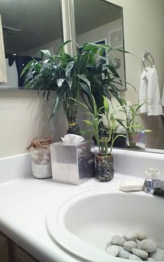 DIY Bathroom Project - I got this idea at my hair salon. Buy a bag of river stones from The Dollar Store or Walmart.  Place in sink.  Wash in separate bowl of half bleach/half water every 2 weeks to keep bacteria from growing on rocks or from rocks starting to smell.