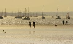 A great photo of Poole Harbour in the sunshine, obviously not this year! Sail Away, Where The Heart Is, Great Photos, Sailing, Places To Go, Sunshine, Louvre, England, Silhouette
