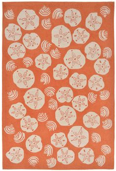 coastal area rug with a decorative collection of white sand dollars and shells