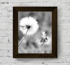 dandelion wall art, black and white flower print, nature photography, botanical poster, floral printable artwork, instant digital download di AlemiPrints su Etsy
