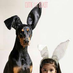 Cutie and the Beast #Dobie