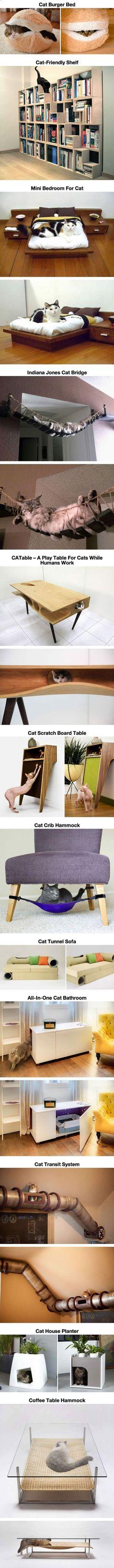 Cats Toys Ideas - Ein Paradies für Katzen Teil 1 | Webfail - Fail Bilder und Fail Videos - Ideal toys for small cats #CatToy