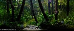 """Love the illusion of being an actual forest! Aquascape by Serkan Cetinkol entitled """"Mystic Forest."""" Follow link for more details. http://showcase.aquatic-gardeners.org/2011/show125.html#"""