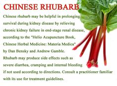 "CHINESE RHUBARB  Chinese rhubarb may be helpful in prolonging survival during kidney disease by relieving chronic kidney failure in end-stage renal disease, according to the ""Helio Acupuncture Book, Chinese Herbal Medicine: Materia Medica"" by Dan Bensky and Andrew Gamble. Rhubarb may produce side effects such as severe diarrhea, cramping and internal bleeding if not used according to directions. Consult a practitioner familiar with its use for treatment guidelines."