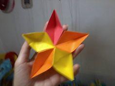 estrella flor
