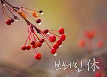 브레인 휴休 명상 - 대한민국 두뇌포털 브레인월드