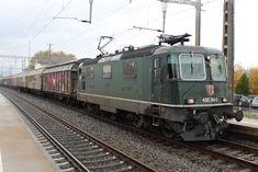 Swiss Railways, Electric Locomotive, Trains, Europe, Levitate, Train