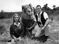 William Holden with Zamba the lion and Capucine.