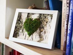 €45.54 plus shipping Moss Heart & Birch Bark Rustic Framed Art - Zero Care, Real and Preserved.  Unique gift!