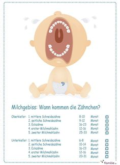 Zwei lange Jahre arbeitet Ihr Baby an seinem Milchgebiss. Hier siehst du, welche… For two long years, your baby is working on his milk dentition. Here you can see which teeth break first. Maila, First Tooth, Baby Boy, After Baby, Pregnant Mom, Baby Kind, Baby Needs, First Baby, Baby Hacks