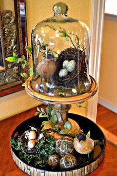 Kristen's Creations: Spring Cloche With Birds Seasonal Decor, Fall Decor, Holiday Decor, Spring Decorations, Mobiles Art, Rose Stabilisée, Cloche Decor, The Bell Jar, Bell Jars