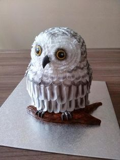Ever feather is hand cut and dusted. Incredible amount of work. Ladybug Cakes, Bird Cakes, Harry Potter Cake, Harry Potter Birthday, Owl Cupcakes, Cupcake Cakes, Fruit Cakes, Wolf Cake, Owl Cake Birthday