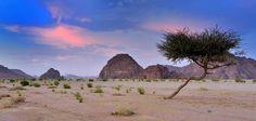 Exodus Walks: Tabuk Province, Saudi Arabia