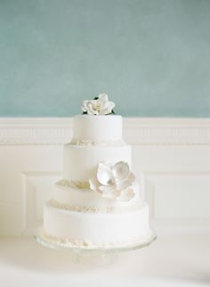 Wedding Cake ~ by http://DeliciousDesserts.net, Photography by kmlphotography.com