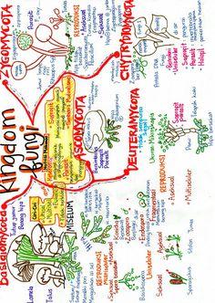 Mitosis, Bullet Journal, Map, Location Map, Peta, Maps