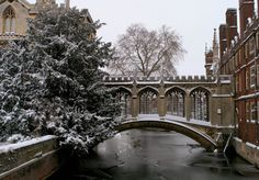 pagewoman:    The Bridge of Sighs St Johns College Cambridge... My blog posts