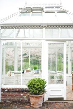 greenhouse / patio (Lisa Warninger + Chelsea Fuss - Book 1)