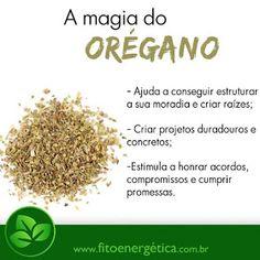 Natural Health Remedies, Herbal Remedies, Magick, Witchcraft, Good Sentences, Healing Herbs, Mind Body Soul, Reiki, Herbalism