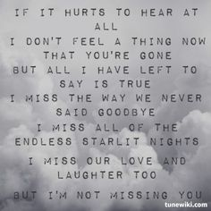 I'm Not Missing You- Amely