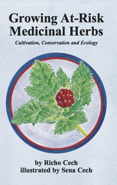 Strictly Medicinal Seeds | Organic growers of medicinal herb seeds, medicinal herb plants, organic vegetable seeds and organic garden seeds