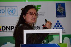 ERIKA ALVAREZ (CHILE). Jefe de la Unidad de Planificación y Ordenamiento Territorial de la División de Planificación y Desarrollo Regional (DIPLADER).