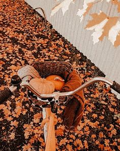 Spooky Scary, Scary Halloween, Fall Halloween, Fall Pictures, Fall Photos, Autumn Aesthetic, Autumn Cozy, Happy Fall Y'all, Christmas Mood