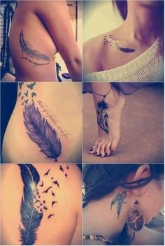 Collection of Feather Tattoos #tattooideaszone via @Joshua Hansen Ideas Zone