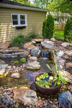 a patio pond with aquatic plants was cleverly added to the edge of the waterfall's stream
