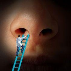 Un puissant antibiotique caché dans notre nez