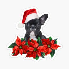 Christmas Stickers, Blossom Flower, Poinsettia, French Bulldog, Santa, Flowers, Designs, Animals, Products