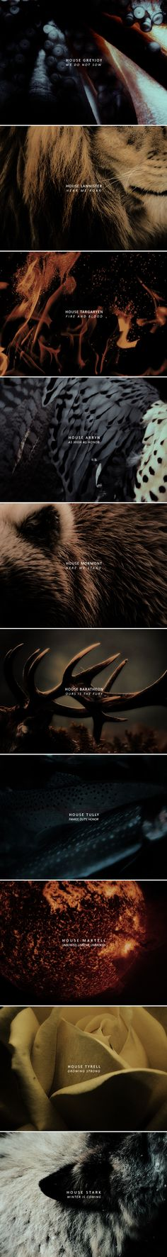 Remember who you are, what you were made to be. Remember your words. #asoiaf