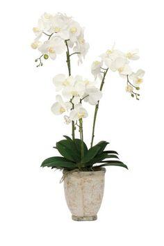 How To Keep Orchids Alive And Looking Gorgeous Orchid Flower Arrangements, Orchid Planters, Orchid Centerpieces, Artificial Flower Arrangements, Flower Planters, Indoor Orchids, Artificial Orchids, White Orchids, Arte Floral
