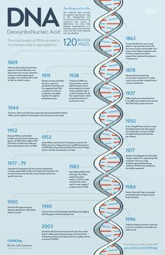 DNA Day inforgraphic