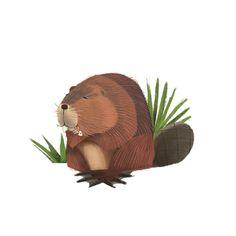 The Animal Books by 4-Leaf Clover studio, via Behance