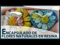 Colgantes de flores naturales recién cogidas en resina | Manualidades