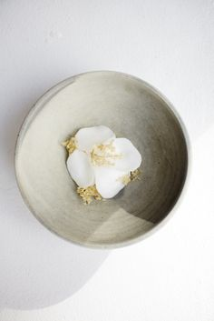 Dessert with sour cream, artichokes and wild carrot. Photo by Rasmus Malmstrøm Plate Design, Food Design, Food Styling, Sour Cream Desserts, Plate Presentation, Western Food, Culinary Arts, Plated Desserts, Food Plating