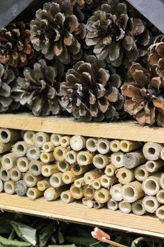 S'aménager un hôtel à insectes avec  des palettes Stuffed Mushrooms, Vases, Bugs, Zen, Nature, Ideas, Garden, Animal Shelters, Insect Hotel