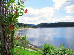Hiking the Black Forest: Schluchsee in Germany Black Forest for Beginners: Lake Titi | http://easyhiker.co.uk
